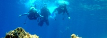 Scuba Diving Marmaris TURKEY